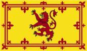 scot lion