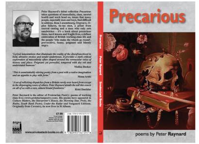 Precarious Cover